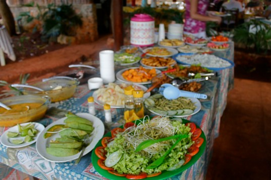 Luncheon Spread at Organic Farm 2
