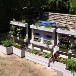 Update on the Caterer's Garden