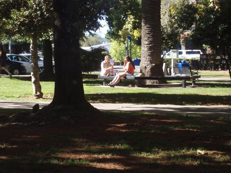 A young couple share lunch in Healdsburg's town plaza