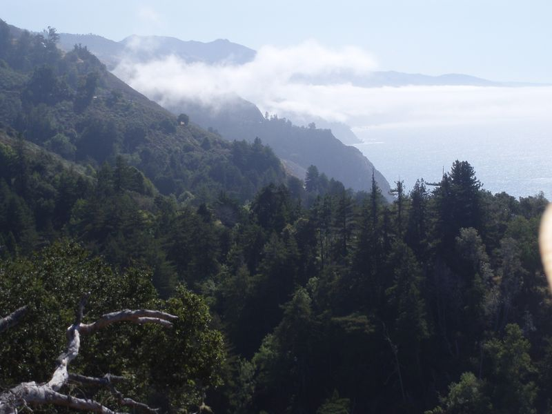 View from the deck at Nepenthe, Big Sur